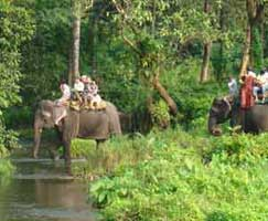 Sundarbans Honeymoon Trip