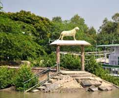 Sundarbans Package Tour