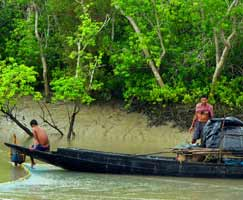 Sundarbans Vacation