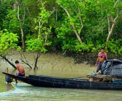 Sundarbans Vacation